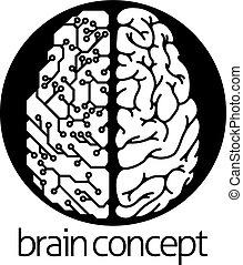 hjärna, cirkel, elektrisk, mänsklig, strömkrets