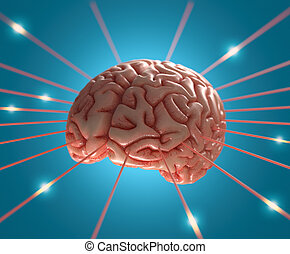 hjärna, energi