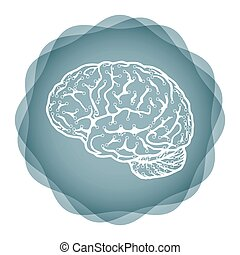 hjärna, -, idé, illustration, innovativ
