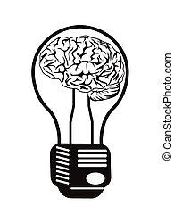 hjärna, ljus kula