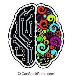 hjärna, mänsklig, bakgrund