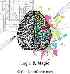 hjärna, rättighet, vänster