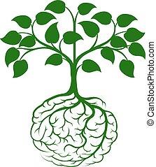 hjärna, rot, träd