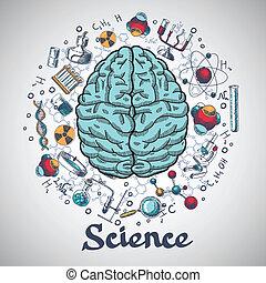 hjärna, skiss, begrepp, vetenskap