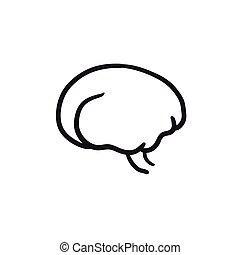 hjärna, skiss, icon.