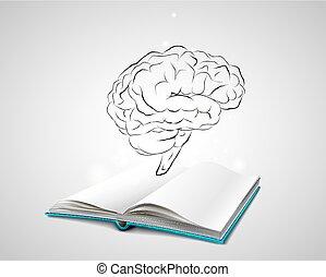hjärna, skiss, isolerat, mänsklig