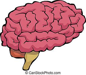 hjärna, tecknad film