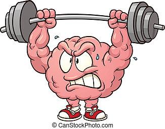 hjärna, tyngdlyftning