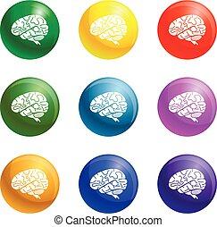 hjärna, vektor, sätta, ikonen