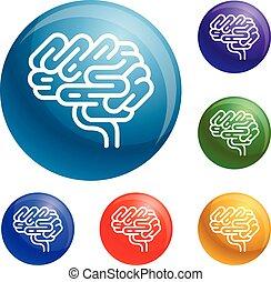 hjärna, vektor, sätta, organ, ikonen