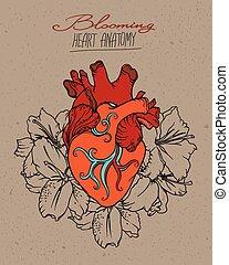 hjärta, concept., blomning