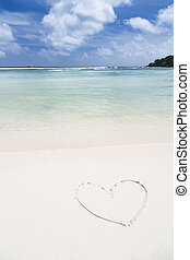 hjärta gestalta, på, a, vita strand