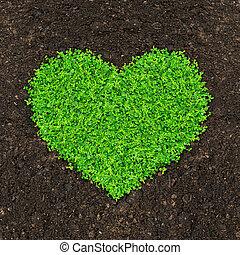 hjärta, gräs, planterar, grön, form