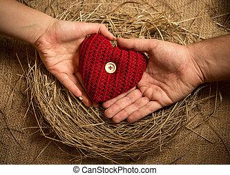 hjärta, kvinna, bygga bo, rynkat, holdingen, fåglar, man