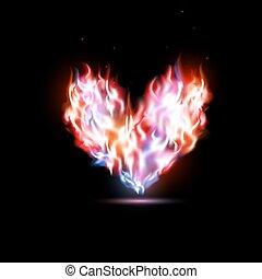 hjärta, mänsklig, flammor