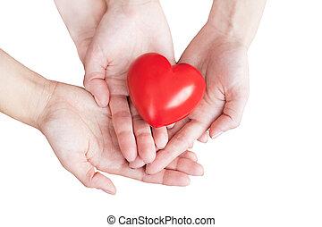 hjärta, par, två, gårdsbruksenheten räcker, försiktigt, röd