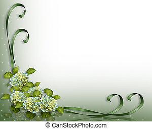 hjørne, hydrangea, blomster