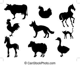 hjemlige dyr