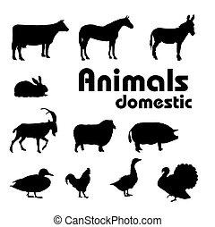 hjemmemarked, silhuetter, vektor, dyr
