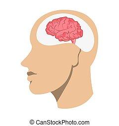 hjerne, anføreren, menneske, ikon