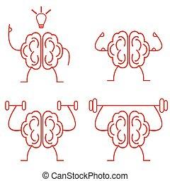 hjerne magt