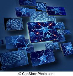 hjerne, neurons, begreb