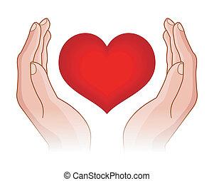 hjerte, ind, hænder