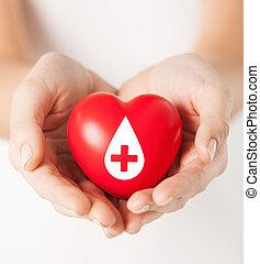 hjerte, kvindelig, tegn, hånd ind hånd, give, rød