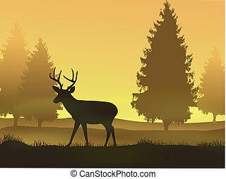 hjort, med, natur, bakgrund