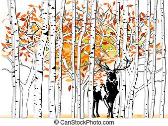 hjort, skog, djup