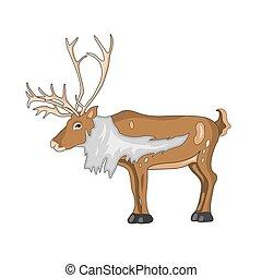 hjort, vektor, jul,  Illustration