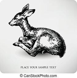 hjortkalv, hand, oavgjord, hög, kvalitet, vektor