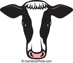 hlavička, kráva