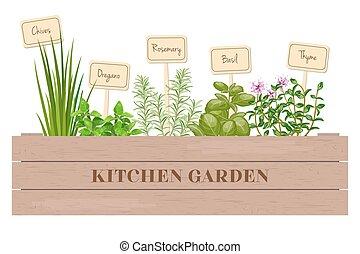 hloupý dopravní klec, o, čerstvý, vaření, byliny, s, opatřit nápisem, do, dřevěný, box.