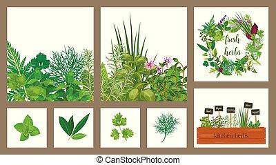 hloupý dopravní klec, o, hospodaření prostořeký, vaření, byliny, do, dřevěný, box., dát, o, karta., gardening., hydroponik