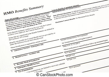 HMO Benefits Summary - An HMO benefits summary page...
