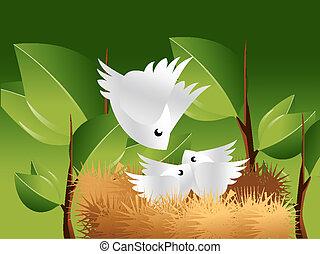 hnízdo, ptáček