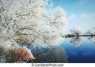 hoarfrost landscape on Havel River (Havelland, Germany).