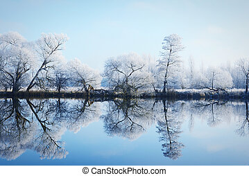 hoarfrost landscape on Havel River (Havelland, Germany)