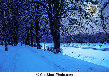 hoarfrost on a winter night - bank of the river with trees...