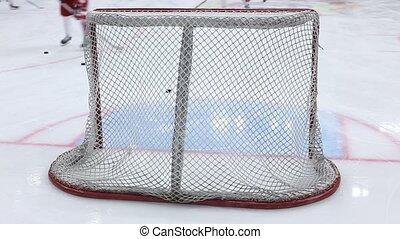 hockey gates closeup