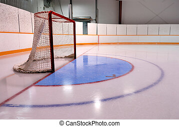 A Hockey or Ringette Net and crease in the Rink
