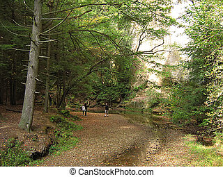 Hocking Hills Ohio - A photograph of Hocking Hills State...