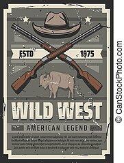 hoedje, geweren, legende, wild, amerikaans westen, sheriff