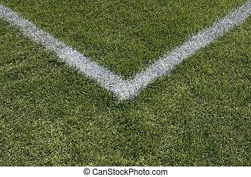 hoek, grens, lijnen, van, een, speelveld