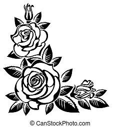 hoek, rozen