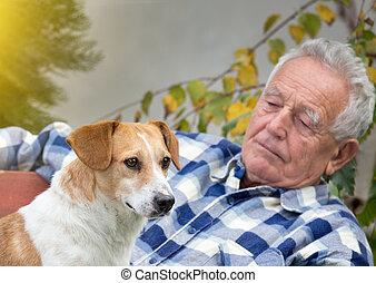 hof, älter, hund, mann