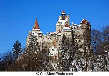 hofburg, kleie, transylvania, -, hofburg, dracula's