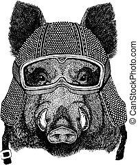 Hog, wild boar with motorcycle helmet. Vintage motorcycle...