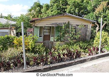 hogar, barbuda, antigua, típico